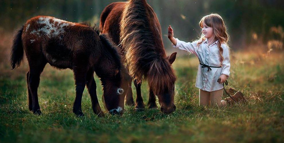 """Катание на лошадях, экскурсия по ферме, обучение езде в конном клубе """"Пинто-бриз"""""""