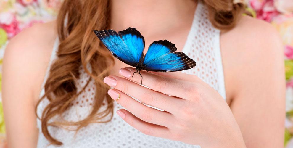 Посещение выставки экзотических насекомых «ВМире Бабочек» сэкскурсией