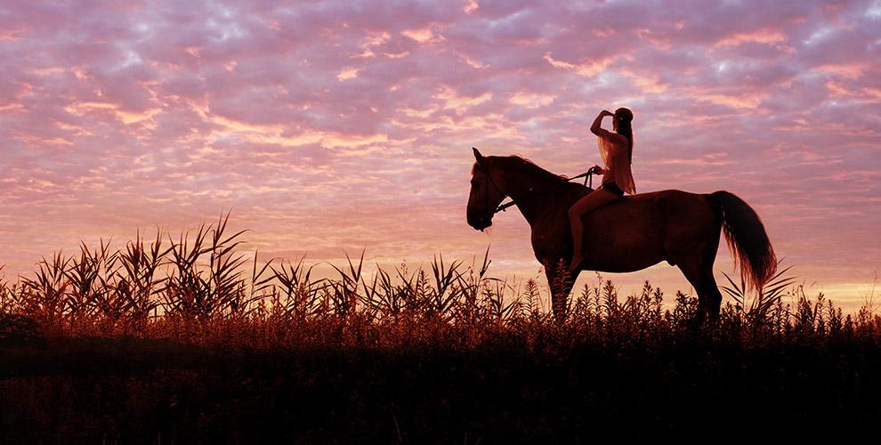 Конный поход «В ночное» с катанием на лошадях, ужином и завтраком в КСК «Баллада»