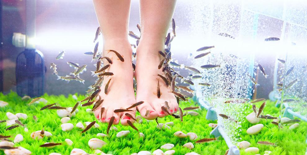 Экзотический биопилинг рук, ног или всего тела в компании DoctorFISH - Exotic SPA