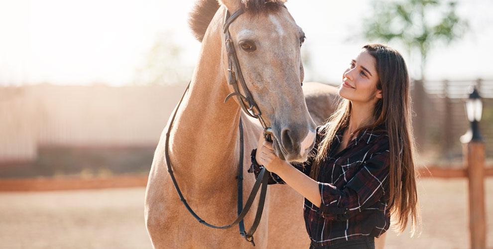 Конные прогулки иаренда лошади дляфотосессии вклубе «Лидер»