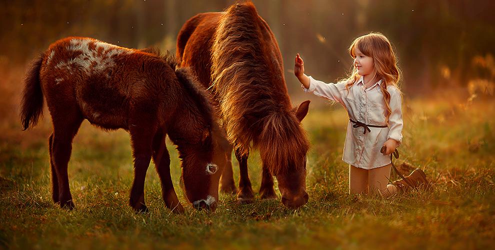 """Аренда пони и прогулочная фотосессия от компании """"Пони на дом"""""""