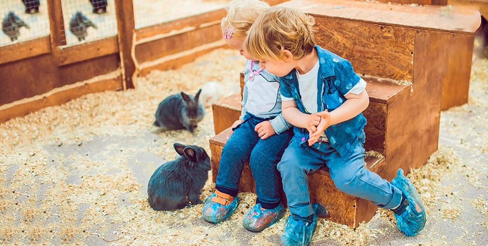 Билет в зоологический центр «Ля-Мур-Чик» для взрослых и детей в ТРК «Горки»