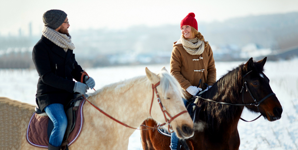Конная прогулка по живописному Шуваловскому парку от конно-спортивного клуба «Арена»